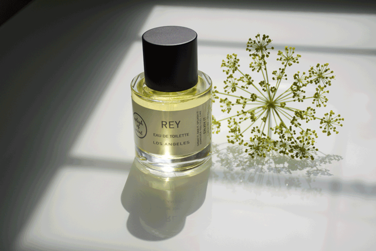 fragrance_mimosa_rey